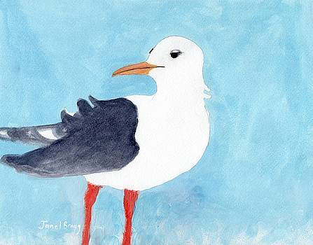 Seagull from Port Townsend II by Janel Bragg