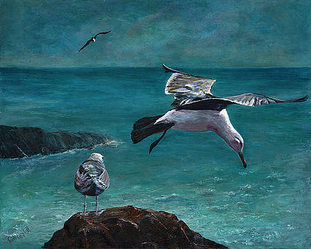 Seagull Landing by Trish Campbell