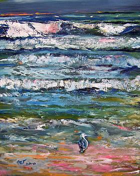 Patricia Taylor - Seagull on the Beach