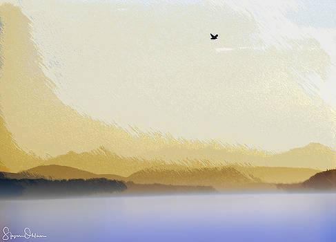 Steve Ohlsen - Seagull over Puget Sound 2 - Signed Limited Edition