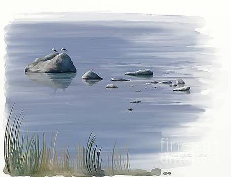 Gull Siesta by Ivana Westin