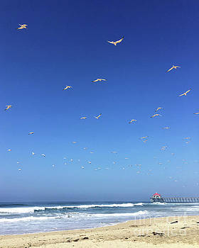 Seagulls and Pier by Cheryl Del Toro