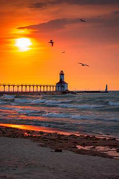 Seagulls at Sunset by Jackie Novak