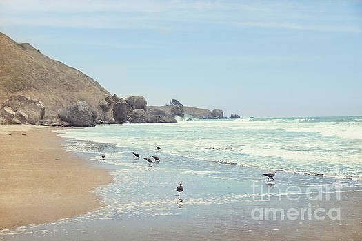 Seagulls in the surf by Cindy Garber Iverson