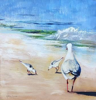 Seagulls by Kathy  Karas