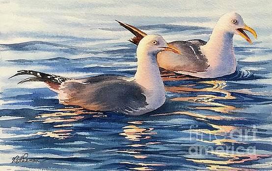 Seagulls by Varvara Harmon