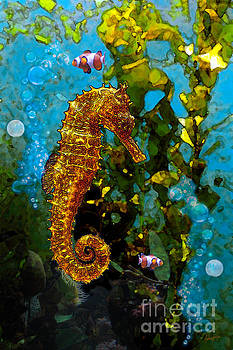 Seahorse and Clowns by Anthony Forster