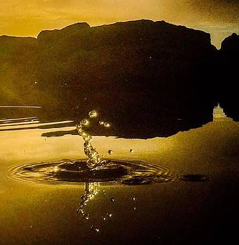 Seahorse droplet by Alistair Lyne