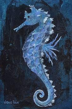 Seahorse by Jamie Frier