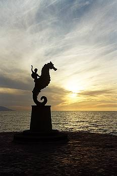 Seahorse Sunset by Brent Easley
