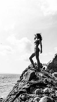 Searching Horizons by Mioara Andritoiu