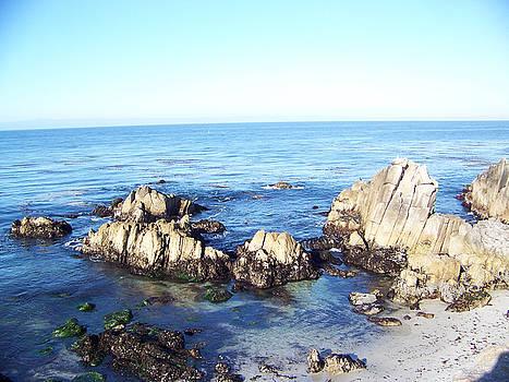 Seascape 1 by Maggie Cruser