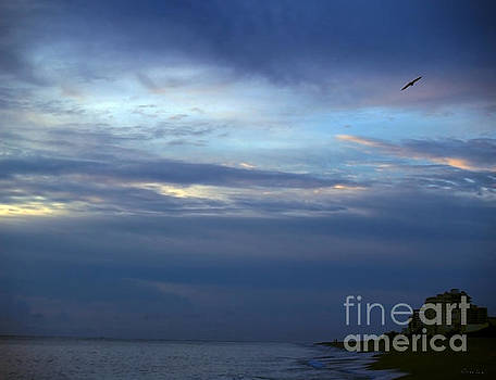 Ricardos Creations - Seascape Dawn Morning Splendor at Vero Beach FL B3