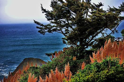 Seascape by Helen Carson