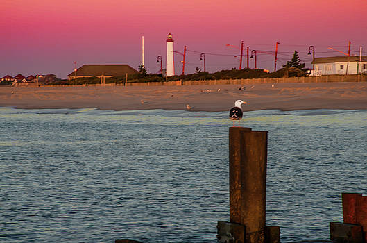 Seascape - The Lighthouse at Cape May by Bill Cannon