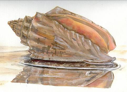 Seashell Reflections by Theresa Blosser