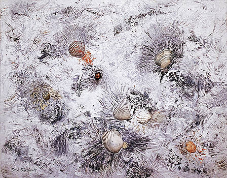 Seashells by Dick Bourgault