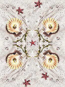 Irina Sztukowski - Seashells Happy Quartet