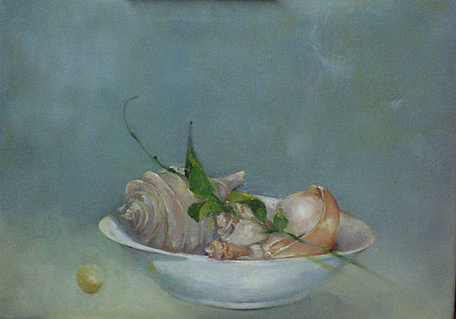 Seashells by Kate Hoekstra