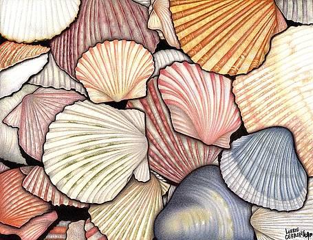 Seashells by Lorrie Cerrone