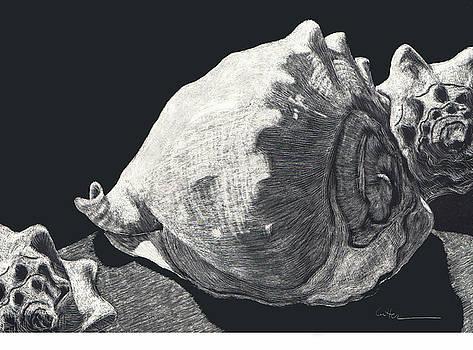 Seashells She Sells by Diane Cutter