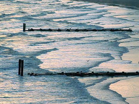 Seashore Design by Arlane Crump