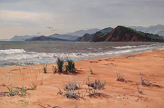 Seashore by Galina Gladkaya