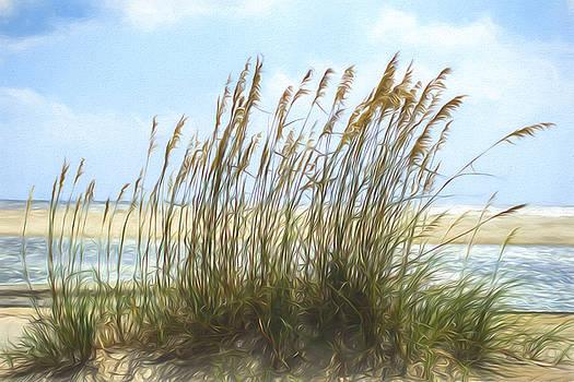 Chris Bordeleau - Seaside Reeds