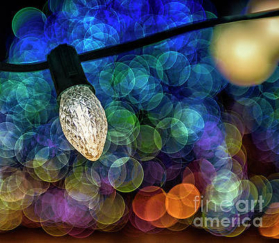 Season of Light by Nina Stavlund