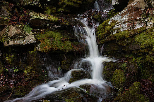 Seasonal Falls at John Burroughs by Jeff Severson