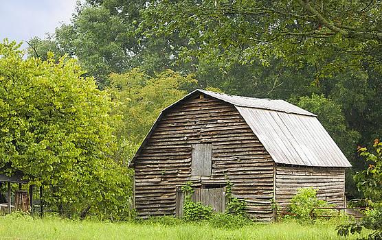Seasoned Barn by Laura Greene