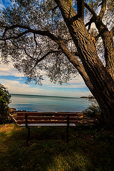 Seat with a view by Tim Buisman