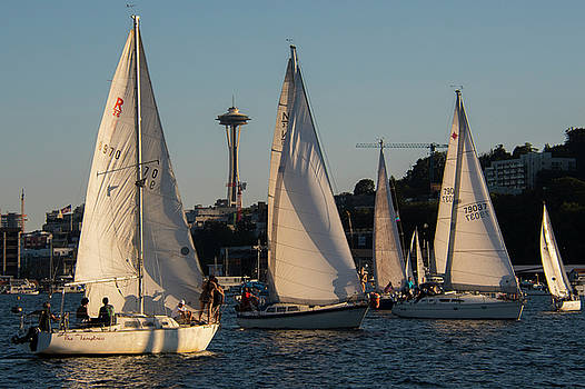 Seattle Duck Dodge Sailing Races by Matt McDonald