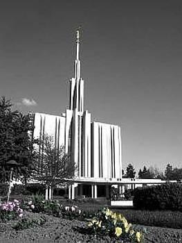 Seattle Temple by Misty Alger