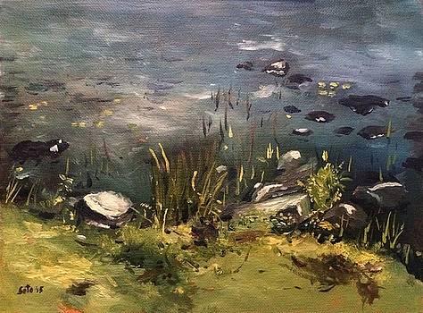 Sebago Campsite- Lake's Edge by Victor SOTO