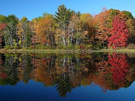 Christine Stack - Sebago Lake Reflection