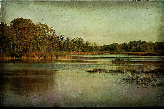 Sebasticook Lake by Cindi Ressler