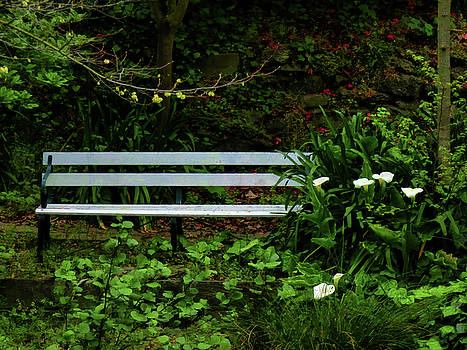 Secluded Seating by Steve Taylor