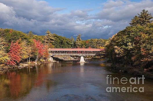 Bob Phillips - Seco River Bridge and Reflection