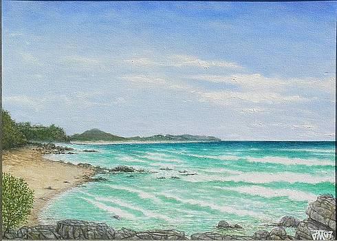 Joe Michelli - Second Bay Coolum Beach