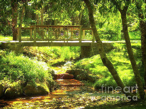 Secret Garden Bridge by Nicole Angell