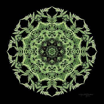 Secret Garden by Karen Casey-Smith