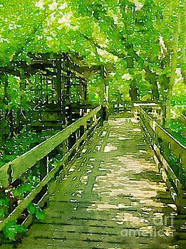Secret Walkway by Janet Dodrill