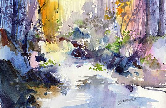 Secret Falls by P Anthony Visco