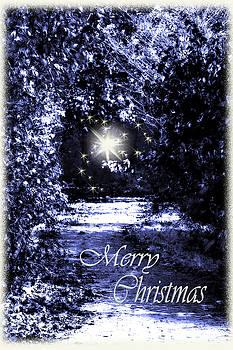 Cathy  Beharriell - Secrets Christmas Card
