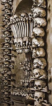 Heather Applegate - Sedlec Skeleton Chalice