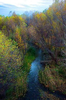 Sedona Stream by Martin Sullivan