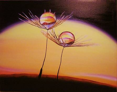 Seeds of Life by Agnieszka Bednarz