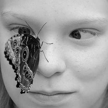 Seeing Eye to Eye with Butterfly by Amanda Lomonaco