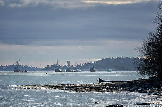Seiners in the Bay 2 by Randy Hall